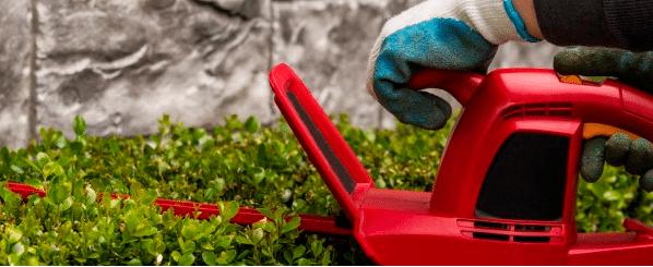 Kosten hovenier tuinman een compleet overzicht for Hoeveel kost een nieuwe trap