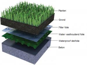 uitleg groen dak